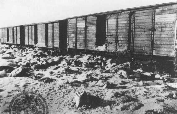 cattle car